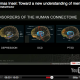 Insel_TedTalk_Connectomish